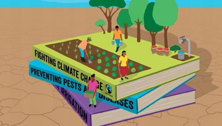 Fairtrade graphic
